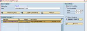 SAP_Lang_Inst_10