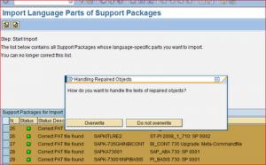 SAP_Lang_Inst_18