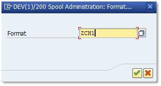 SAP Custom Page Format 3-7