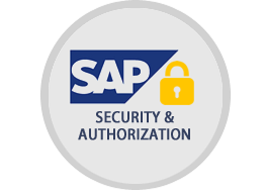 SAP Security Reports: Authorizations, Roles & Users
