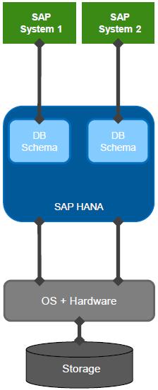 SAP HANA MCOD Deployment