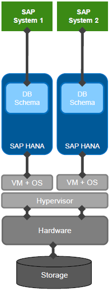 SAP HANA Virtualized Database Deployment
